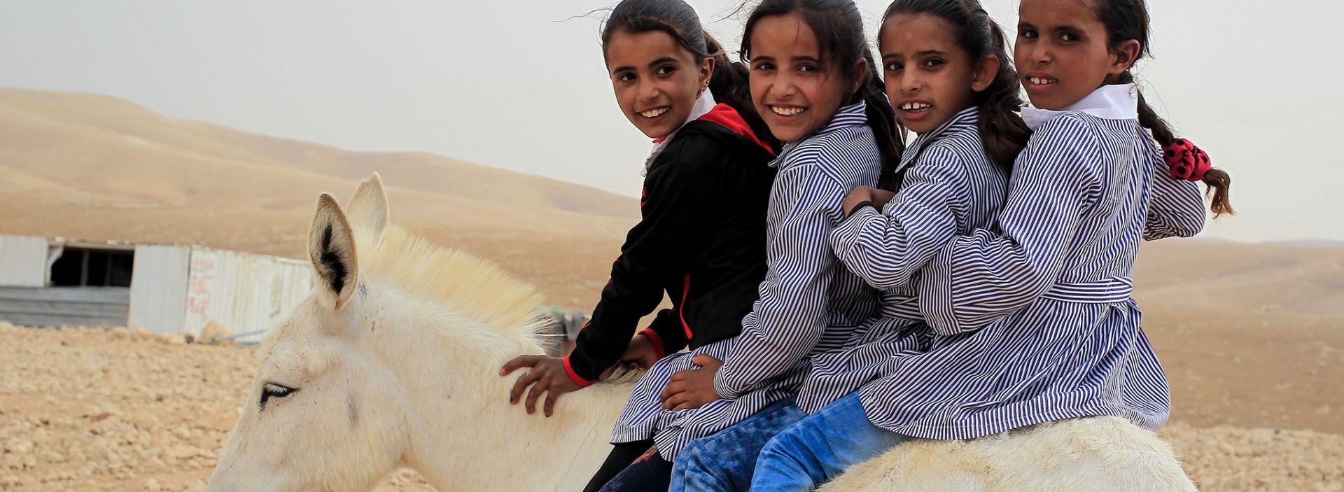 Palestinian children sitting together on a mule