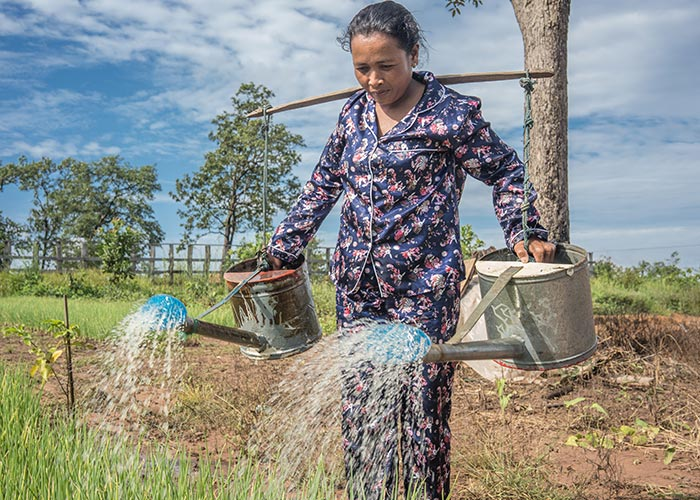 A woman waters her crops in Tim Nat - Traping Sangke Lich village, Cambodia.