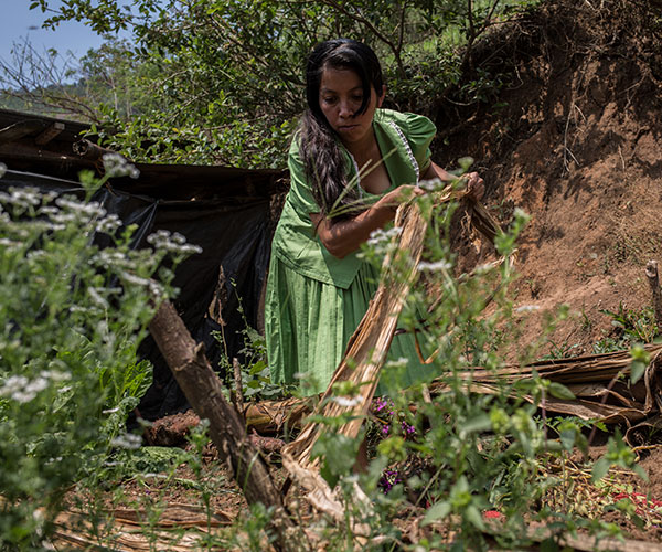 A woman tends to her fields at an Action Against Hunger project in Guatemala.