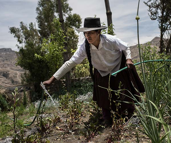 A woman works on a farm in Peru.