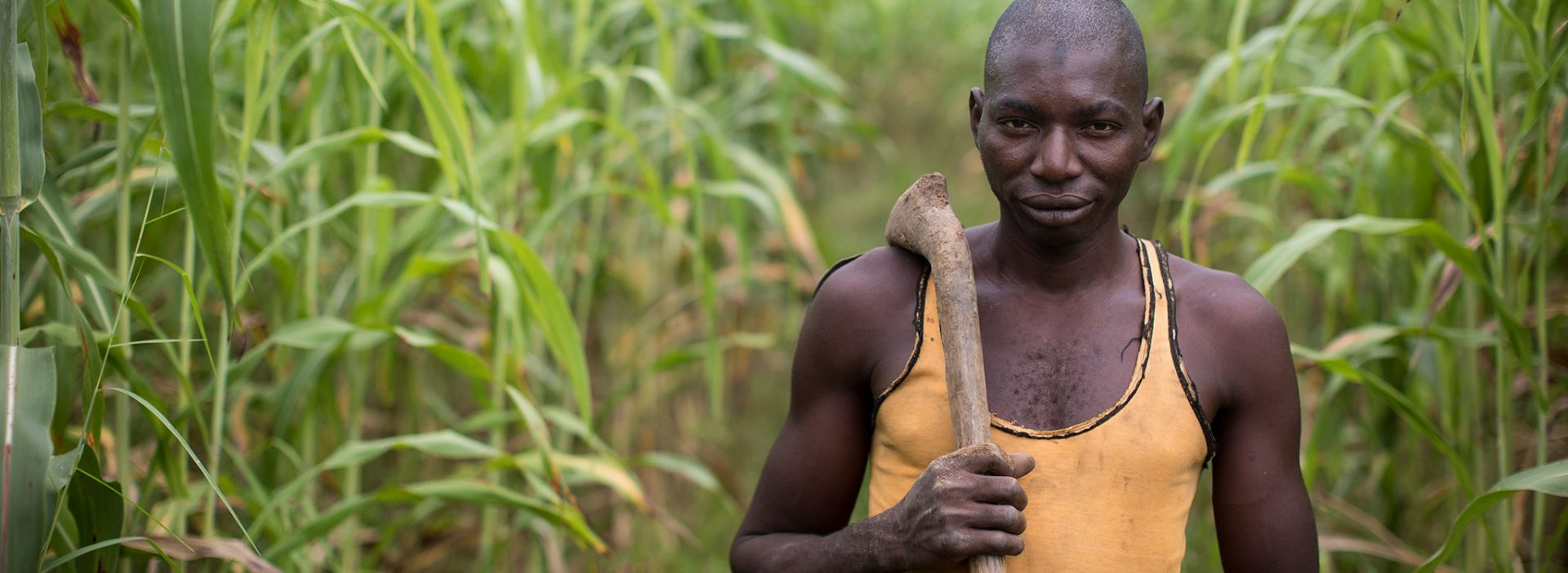 A man works in his field at an Action Against Hunger project in Mali.