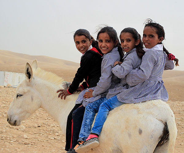 Girls sat on a donkey at an Action Against Hunger project in Occupied Palestinian Territory.