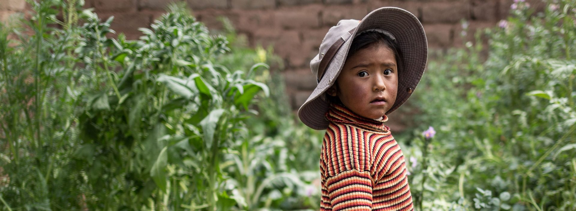 A child in a garden project supported by Action Against Hunger in Puno, Peru.