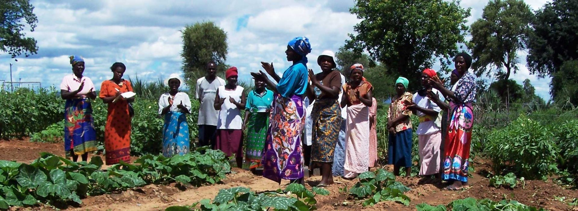 A group of women at an Action Against Hunger project in Zimbabwe.