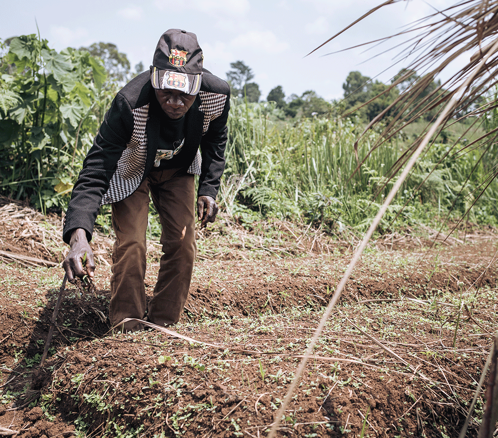 Farmer Georges Lokana Budza Loga uproots weeds in his nursery created as part of the Action Against Hunger agricultural revival project in DRC