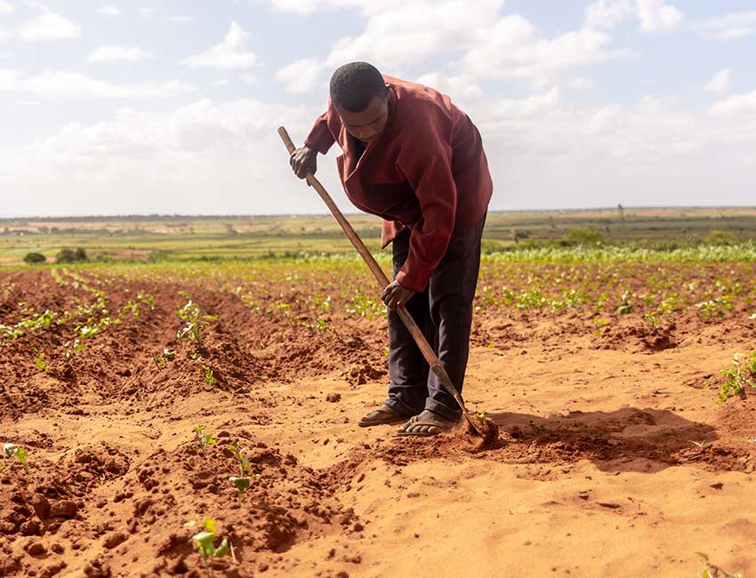 A farmer in Madagascar affected by the climate crisis.